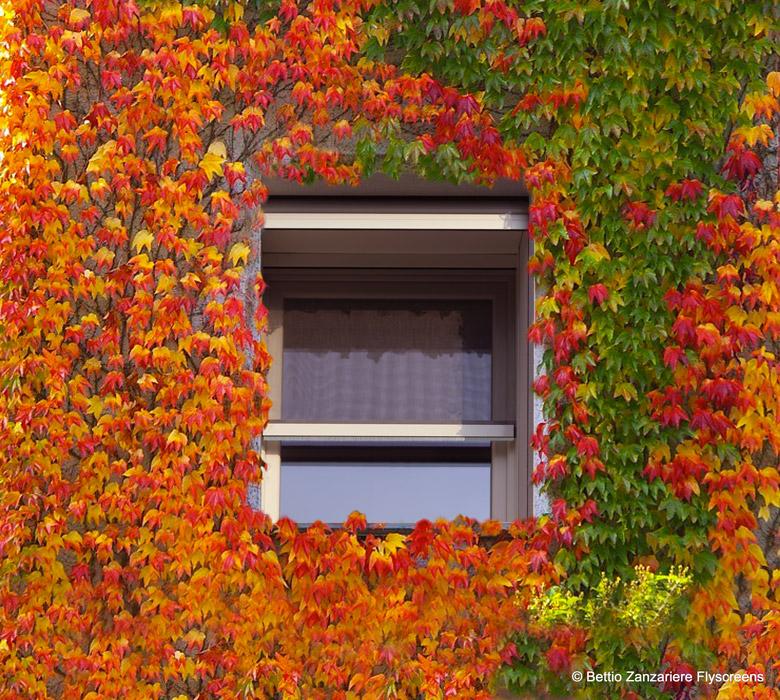 Autumn sigma zanzariera autunno h ssig arredamenti interni for Sigma arredamenti