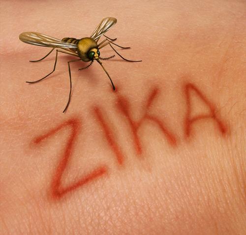 Febbre Zika